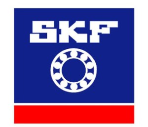 skf-6305-2rs-450-p